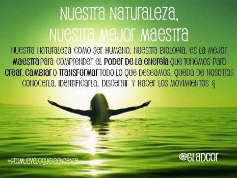 dia-mundial-de-la-naturaleza.jpg8