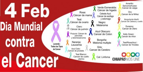 dm-cancer-2013-tipo-de-cancer