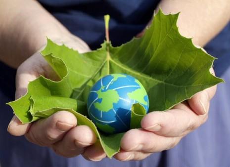noticias_environment_day
