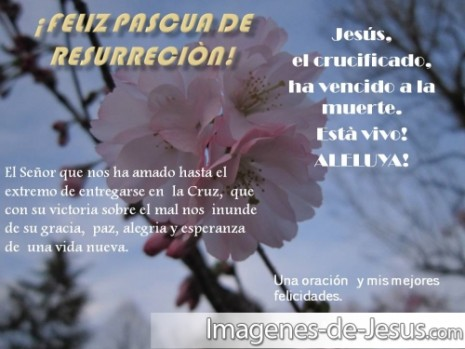 Feliz-Pascua