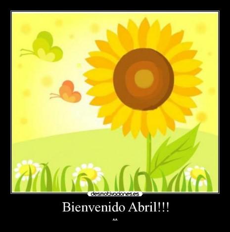 abril_refranes_girasol