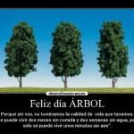 Cómo celebrar a los árboles? Imágenes para el Día del Árbol