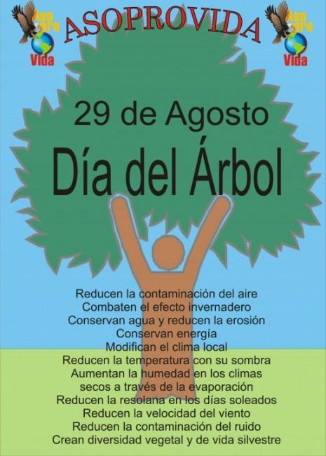 dia-del-arbol-2-arbolito