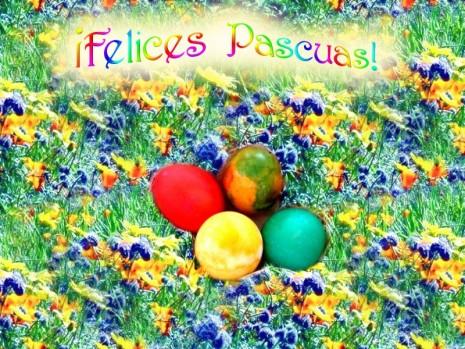 felices-pascuas-dsc01140