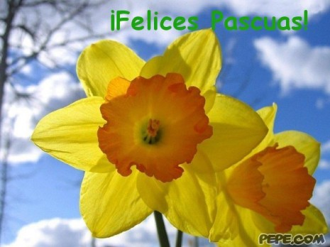 felices_pascuas_21