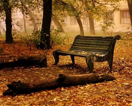 paisajes de otoño-d2