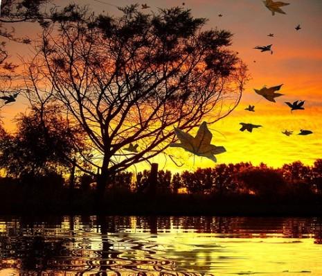 paisajes de otoño-d4