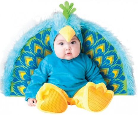 bebes-pavo-real