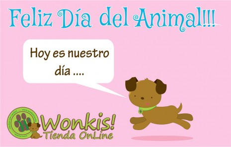 dia-del-animal_0011