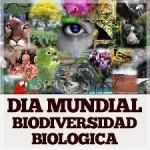 25 imágenes del Día Internacional de la Biodiversidad Biológica en imágenes