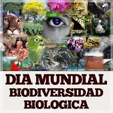 biodiversidad.jpg1