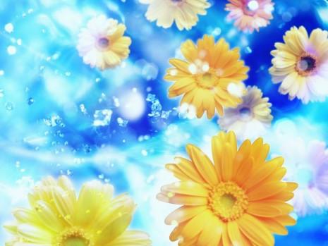 47 Imagenes De Flores Para Descargar Y Usar De Fondo De Whatsapp