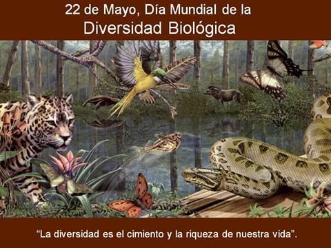 biodiver-bio