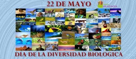 biodiversidads