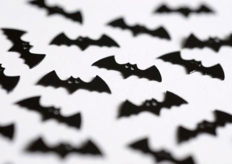 bats_original
