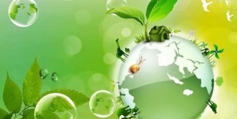 medioDia-Mundial-Medio-Ambiente-2014-660x330