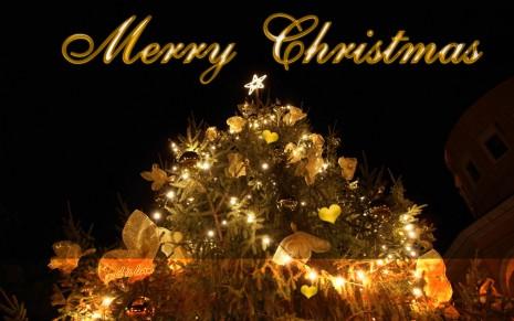 merry-christmas-merry-christmas-wallpaper-christmas-tree-