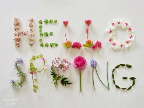 primaveraffds
