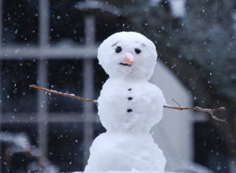 snowman-by-mgshelton-800x586