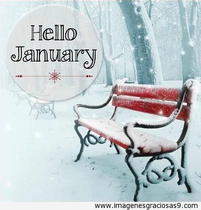 enerohello4