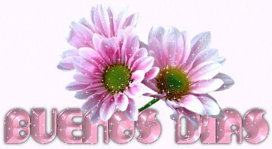 Flores Con Mensajes Para Romanticos Compartir Enamorados En