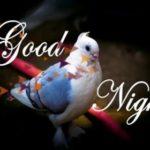 """Imágenes de """"Good Night"""" para compartir en WhatsApp: Buenas noches!"""