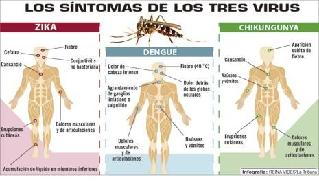 zika-chikungunya-dengue-770x470