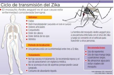 zikaCiclo-de-transmisión-del-virus-Zika