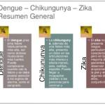 +30 imágenes Zika, Dengue y Chikungunya para WhatsApp