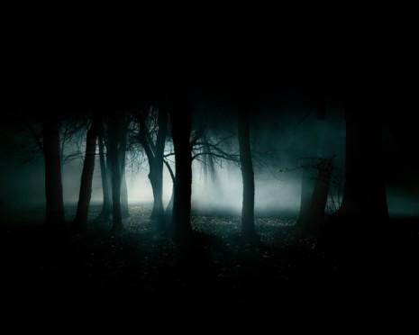 319019-dark