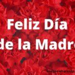 Originales tarjetas para WhatsApp del día de las madres de Colombia, Paraguay, México, Bolivia, España