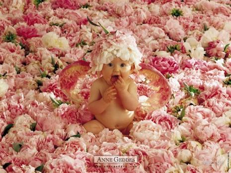 fotografias_publicitarias_bebes