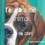 Imágenes de animales graciosos para el Día del animal el 29 de abril