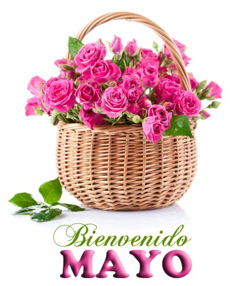 mazoBienvenido Mayo día de las madres 10 de mayo postales con mensajes 2