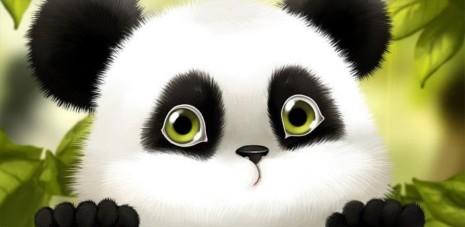 panda465
