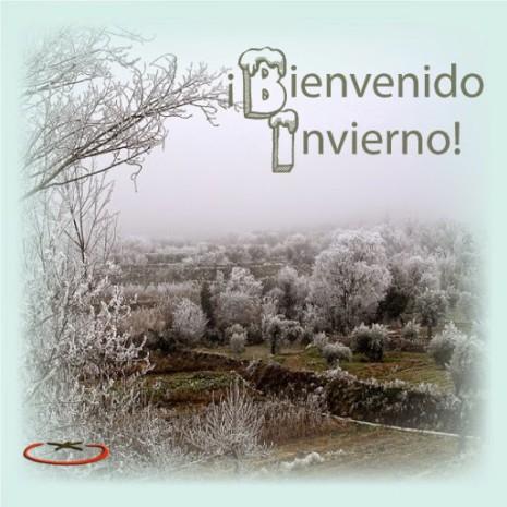 bienvenido-invierno