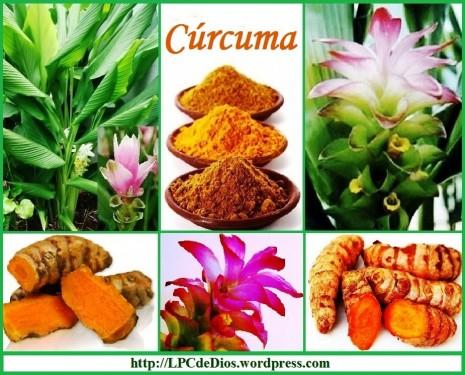 aromaticascurcuma.png2