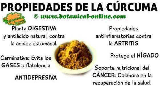 aromaticascurcuma1