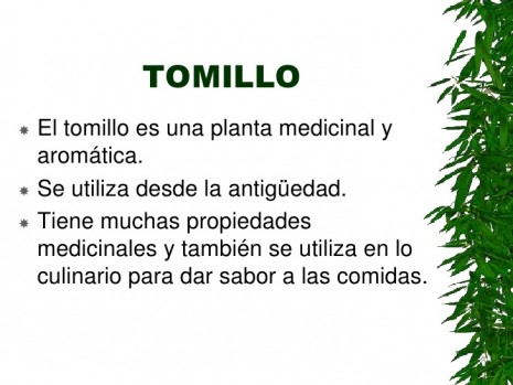 aromaticastomillo