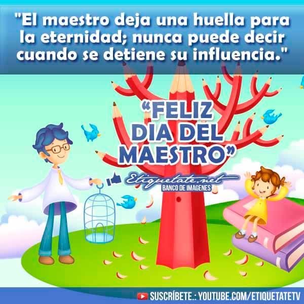maestrofrase24