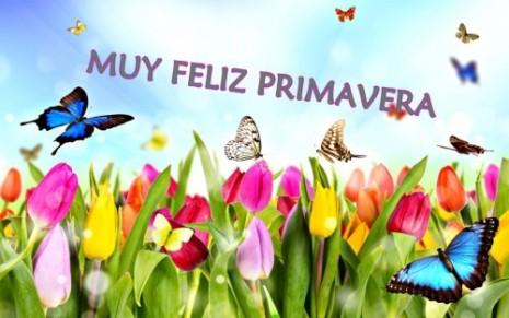 primaverafeliz12