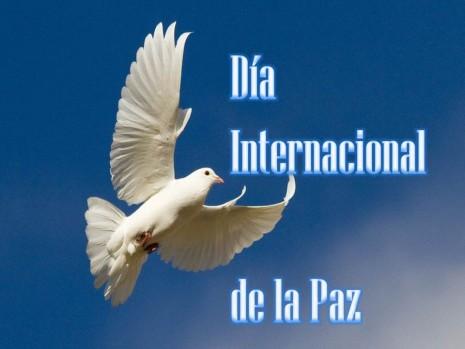 paz-jpg11