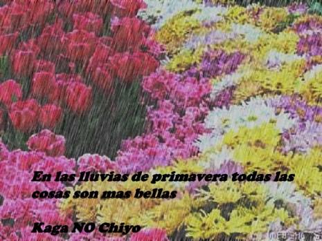 primaverapaisajefrase.png5