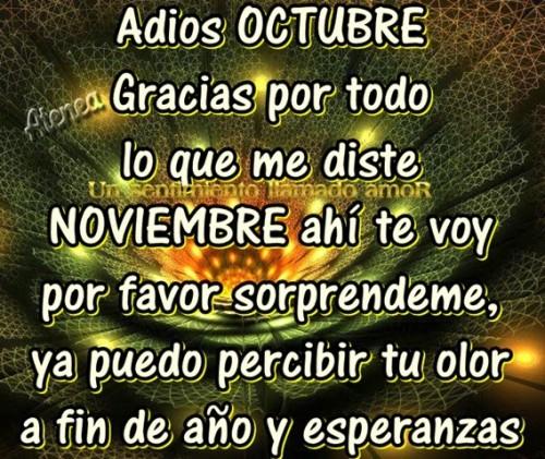 noviembreadiosfrase-jpg14