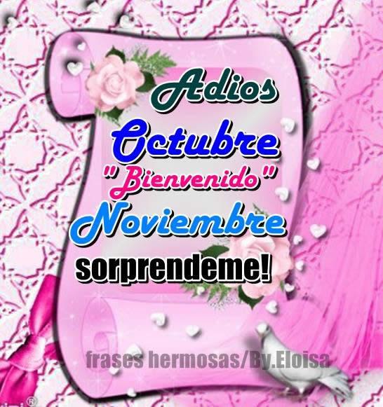 noviembreadiosfrase-jpg3