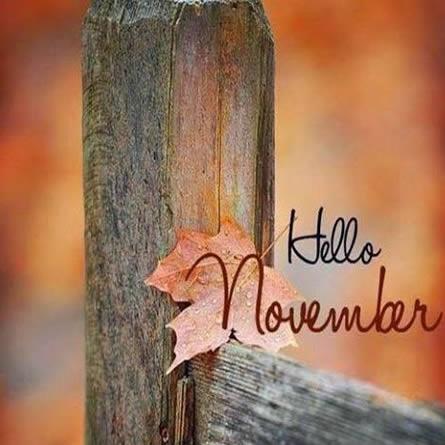 noviembrehello9