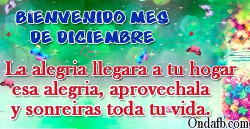 diciembrebienvenido-jpg34