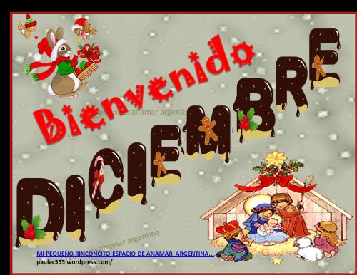 diciembrebienvenido-jpg40