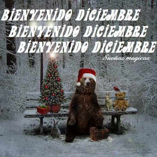 diciembrebienvenido-jpg41