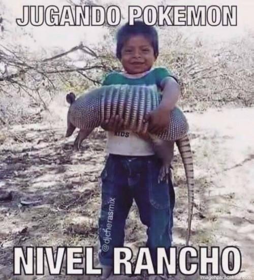 memes-super-graciosos-de-pokemon-go-para-whatsapp-3